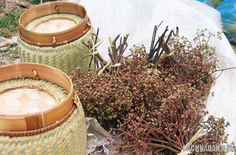 mon an dac san yen bai 8 10 món ngon đặc sản nổi tiếng của tỉnh Yên Bái