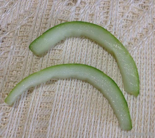 cach tia giay bup be 12 - Cách tỉa giày búp bê bằng dưa chuột và cà chua