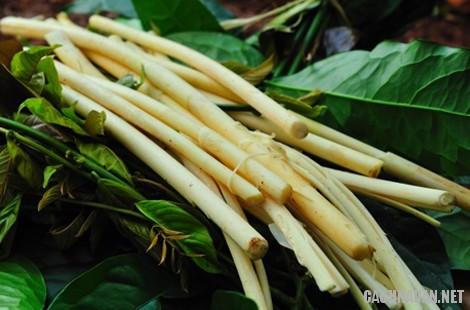 mon an dac san binh phuoc 5 - 9 món đặc sản ngon nổi tiếng của Bình Phước