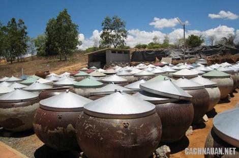 mon an dac san binh thuan 1 - 10 món đặc sản nổi tiếng của miền đất nắng gió Ninh Thuận