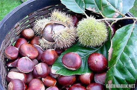 mon an dac san cao bang 3 - 10 món ăn ngon nổi tiếng khi du lịch Cao Bằng