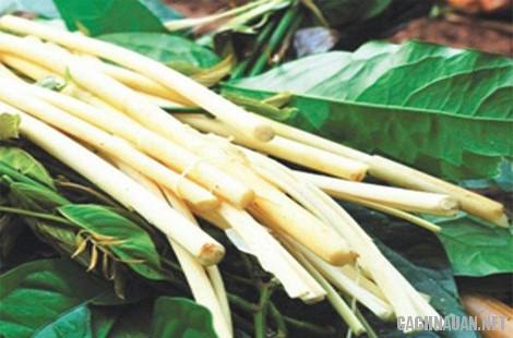 mon an dac san dac nong 9 - 10 món đặc sản ngon nổi tiếng của tỉnh Đắc Nông