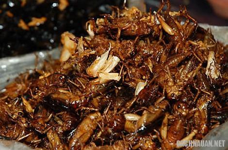 mon an dac san kon tum 1 - 10 món đặc sản nổi tiếng của tỉnh Kon Tum