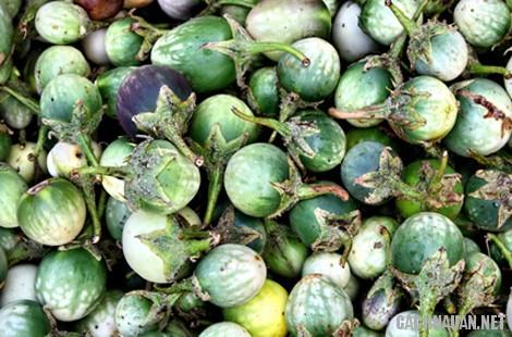 mon an dac san kon tum 4 - 10 món đặc sản nổi tiếng của tỉnh Kon Tum
