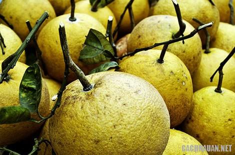 mon an dac san phu tho 8 - 10 món ăn đặc sản nổi tiếng của vùng đất tổ Phú Thọ