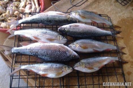 mon an dac san quang ngai 8 - 10 món ăn đặc sản nổi tiếng của tỉnh Quảng Ngãi