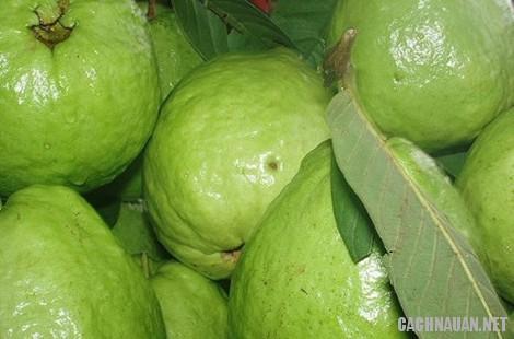 mon an dac san thai binh 2 - 10 món ăn đặc sản nổi tiếng của quê lúa Thái Bình