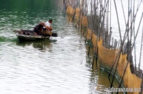 mon an dac san vinh phuc 2 - 10 món đặc sản nổi tiếng của tỉnh Vĩnh Phúc